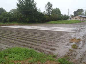 9月の大雨
