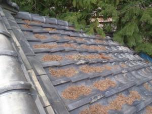 2階の屋根